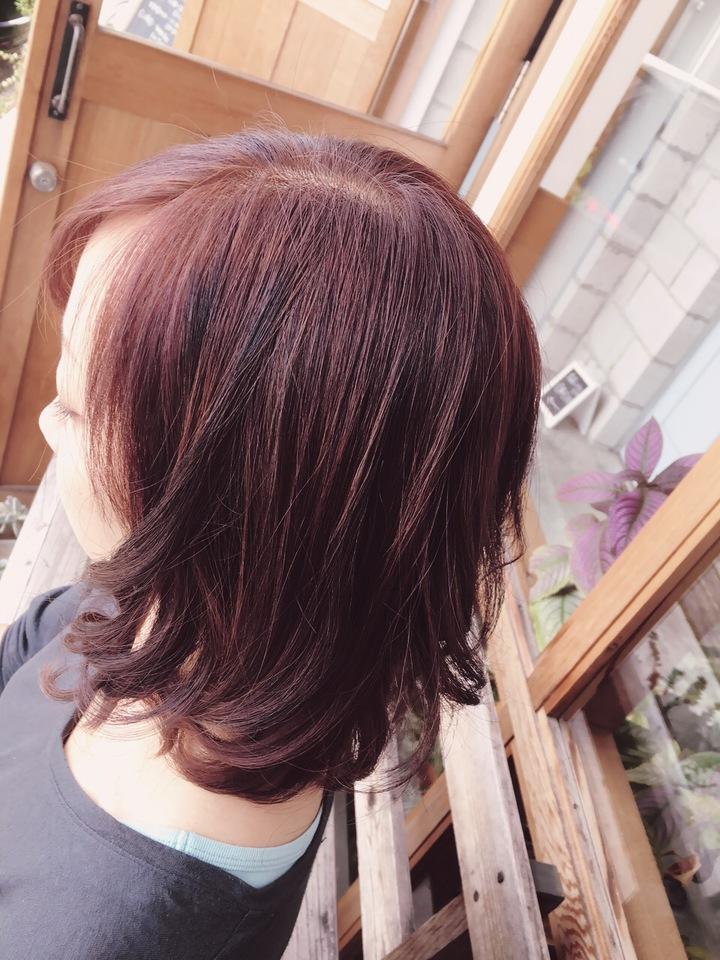 秋色,カラー,ローライト,nikihair,浜松市,美容室
