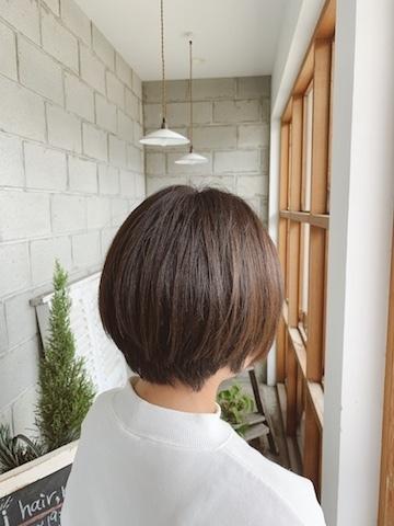 mitsukichan.jpeg